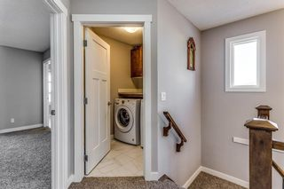 Photo 31: 138 Howse Drive NE in Calgary: Livingston Detached for sale : MLS®# A1084430