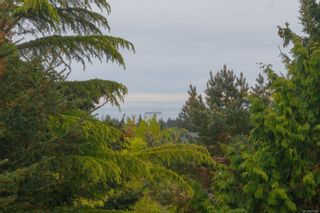 Photo 31: 3360 Ravenwood Rd in : Co Triangle House for sale (Colwood)  : MLS®# 874060
