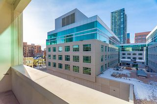 Photo 16: 304 1117 1 Street SW in Calgary: Beltline Apartment for sale : MLS®# A1060386