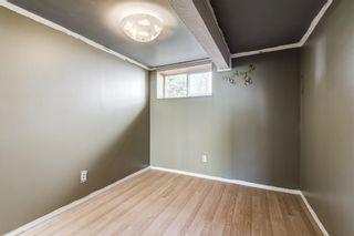 Photo 16: 452 Malvern Close NE in Calgary: Marlborough Park Detached for sale : MLS®# A1111639