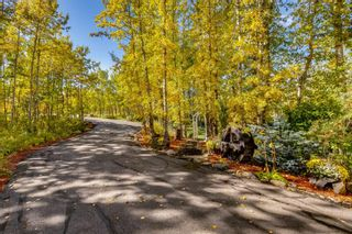 Photo 35: 228 Rolling Acres Drive in Rural Rocky View County: Rural Rocky View MD Detached for sale : MLS®# A1151111