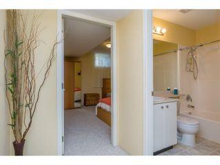 Photo 17: 10274 242B Street in Maple Ridge: Albion House for sale : MLS®# R2039833
