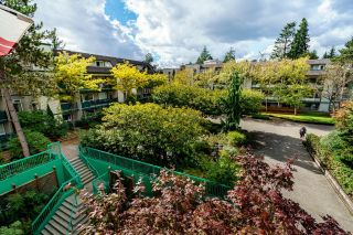 """Photo 23: 301 1190 PACIFIC Street in Coquitlam: North Coquitlam Condo for sale in """"PACIFIC GLEN"""" : MLS®# R2622218"""