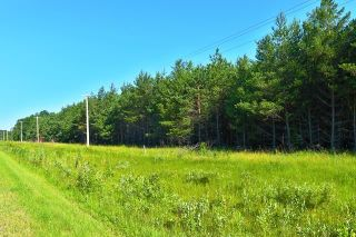 Photo 3: 0 10N Road in Sprague: Vacant Land for sale : MLS®# 202112232