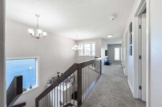 Photo 16: 8515 216 Street in Edmonton: Zone 58 House for sale : MLS®# E4264294