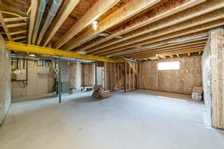 Photo 38: 52 Roberge Close: St. Albert House for sale : MLS®# E4256674
