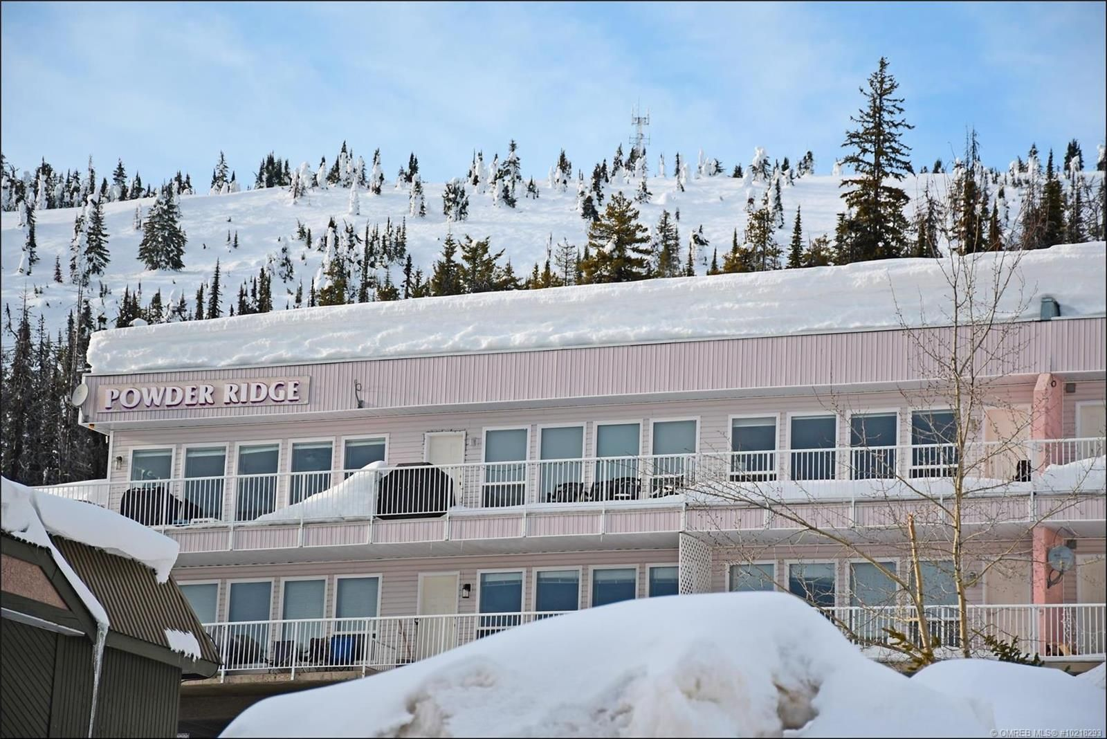 Main Photo: 102 7375 porcupine Road in big white: Condo for sale (Out of Town)  : MLS®# 10218293