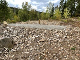 Photo 5: 292 Terry Road, in Enderby: Vacant Land for sale : MLS®# 10239679