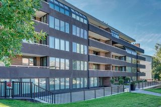 Photo 30: 201 511 56 Avenue SW in Calgary: Windsor Park Apartment for sale : MLS®# C4266284