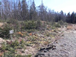 Photo 3: Lot 16 FUNDY BAY Drive in Victoria Harbour: 404-Kings County Vacant Land for sale (Annapolis Valley)  : MLS®# 201902464