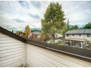 """Photo 12: 805 9274 122ND Street in Surrey: Queen Mary Park Surrey Townhouse for sale in """"WHISPERING CEDARS"""" : MLS®# F1425476"""