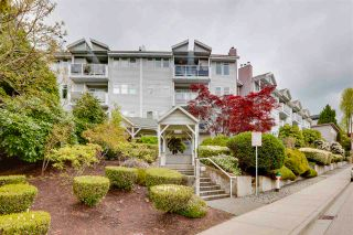"Photo 1: 308 5335 HASTINGS Street in Burnaby: Capitol Hill BN Condo for sale in ""The Terrace"" (Burnaby North)  : MLS®# R2574520"