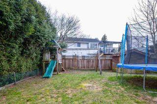 Photo 29: 20230 STANTON Avenue in Maple Ridge: Southwest Maple Ridge House for sale : MLS®# R2539510