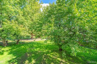 Photo 9: 2124 ELSPETH Place in Port Coquitlam: Mary Hill House for sale : MLS®# R2621138