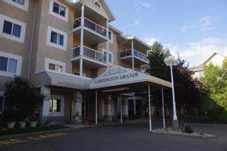 Photo 17: 312 10511 42 Avenue in Edmonton: Zone 16 Condo for sale : MLS®# E4262732