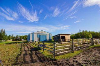 Photo 26: 12240 GOLATA CREEK Road in Fort St. John: Fort St. John - Rural E 100th House for sale (Fort St. John (Zone 60))  : MLS®# R2490395