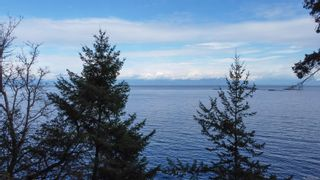 Photo 46: 3522 Stephenson Point Rd in : Na Hammond Bay House for sale (Nanaimo)  : MLS®# 856029