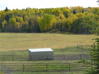 Photo 6: 43141 TWP RD 283 in COCHRANE: Rural Rocky View MD Residential Detached Single Family for sale : MLS®# C3506968