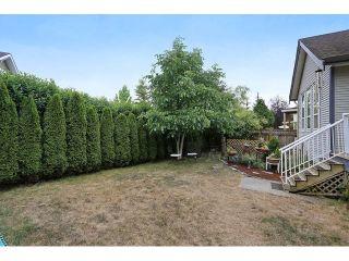 Photo 19: 16646 61 AV in Surrey: Cloverdale BC House for sale (Cloverdale)  : MLS®# F1446236