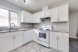 Photo 11: 11235 52 Street in Edmonton: Zone 09 House for sale : MLS®# E4252061