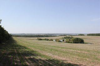 Photo 6: 39103 Highway 20: Sylvan Lake Detached for sale : MLS®# C4192272