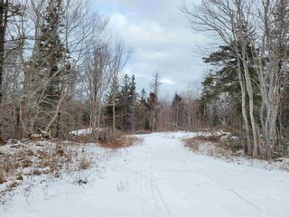 Photo 9: 2220 Shore Road in Delaps Cove: 400-Annapolis County Vacant Land for sale (Annapolis Valley)  : MLS®# 202101419