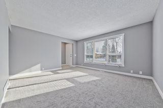 Photo 3: 1244 Falconridge Drive NE in Calgary: Falconridge Detached for sale : MLS®# A1067317