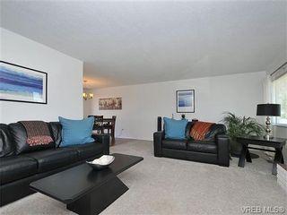 Photo 3: 4021 Oberlin Pl in VICTORIA: SE Gordon Head House for sale (Saanich East)  : MLS®# 648108