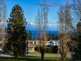 Photo 9: 789 Nancy Greene Dr in CAMPBELL RIVER: CR Campbell River Central House for sale (Campbell River)  : MLS®# 778989