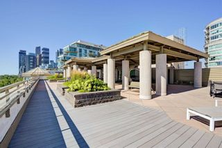 Photo 29: 201 80 Palace Pier Court in Toronto: Mimico Condo for lease (Toronto W06)  : MLS®# W4871604