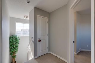 Photo 17: 227 Silver Springs Way NW: Airdrie Detached for sale : MLS®# A1083997
