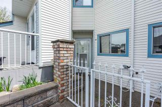 """Photo 30: 31 19797 64 Avenue in Langley: Willoughby Heights Townhouse for sale in """"Cheriton Park"""" : MLS®# R2573574"""