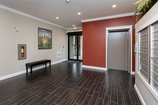 """Photo 3: 204 11882 226 Street in Maple Ridge: East Central Condo for sale in """"The Residences at Falcon Center"""" : MLS®# R2522519"""
