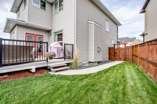 Photo 46: 187 Cranford Green SE in Calgary: Cranston Detached for sale : MLS®# A1092589