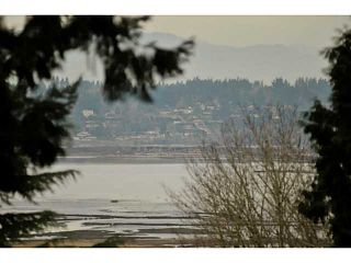 """Photo 13: 12855 CRESCENT Road in Surrey: Elgin Chantrell House for sale in """"Crescent Beach / Ocean Park"""" (South Surrey White Rock)  : MLS®# F1413765"""