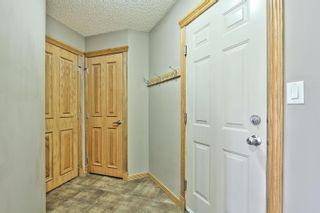 Photo 20: 59 FAIRWAY Drive: Spruce Grove House for sale : MLS®# E4260170