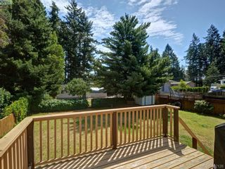 Photo 19: 3371 Wishart Rd in VICTORIA: Co Wishart South House for sale (Colwood)  : MLS®# 767695