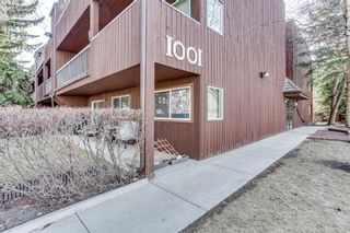 Photo 34: 205 1001 68 Avenue SW in Calgary: Kelvin Grove Apartment for sale : MLS®# A1144900