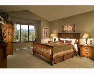 """Photo 4: 22826 137TH Avenue in Maple_Ridge: Silver Valley House for sale in """"SILVER RIDGE"""" (Maple Ridge)  : MLS®# V704127"""