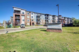 Photo 36: 312 5510 SCHONSEE Drive in Edmonton: Zone 28 Condo for sale : MLS®# E4265102