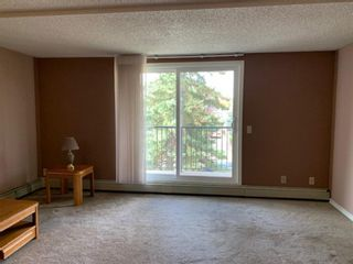 Photo 20: 206 280 Banister Drive: Okotoks Apartment for sale : MLS®# A1145640