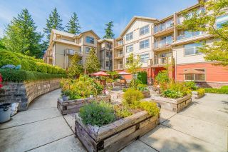 """Photo 39: 104 2511 KING GEORGE Boulevard in Surrey: King George Corridor Condo for sale in """"The Pacifica"""" (South Surrey White Rock)  : MLS®# R2617493"""