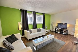 Photo 5: 102 11029 84 Street in Edmonton: Zone 09 Condo for sale : MLS®# E4238690