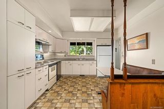 Photo 6: 3350 Maplewood Rd in Saanich: SE Maplewood House for sale (Saanich East)  : MLS®# 844903