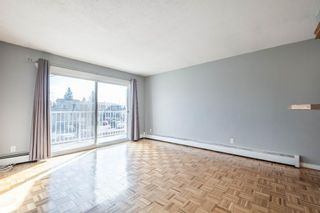 Photo 10: 7 4328 75 Street NW in Calgary: Bowness Apartment for sale : MLS®# A1094944