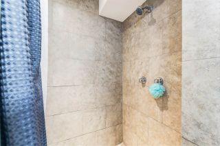 Photo 14: 12232 Dovercourt Crescent NW in Edmonton: Zone 04 House for sale : MLS®# E4235853
