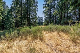 Photo 22: 390 Brookleigh Rd in : SW West Saanich Land for sale (Saanich West)  : MLS®# 883439