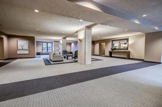 Photo 33: 402B 500 EAU CLAIRE Avenue SW in Calgary: Eau Claire Apartment for sale : MLS®# A1045268