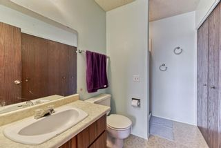 Photo 15: 167 Templevale Road NE in Calgary: Temple Semi Detached for sale : MLS®# A1140728