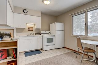 Photo 37: 2108 51 Avenue SW in Calgary: North Glenmore Park Detached for sale : MLS®# A1058307